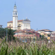 Montorso Vicentino (Vicenza, Veneto, Italy) - Old town and field — Stock Photo