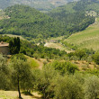 Stock Photo: Farm in Tuscany near Artimino