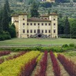 Ancient villa near Pistoia (Tuscany) — Stock Photo #6911280