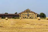 Urbana (Padova, Veneto, Italy) - Farm — Stock Photo