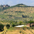 Farm in Tuscany near Artimino — Foto de Stock