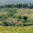 Farm in Tuscany near Artimino — Stock Photo