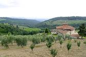 Chianti (Tuscany), old farmhouse — Stock Photo