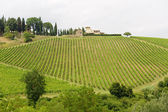 Chianti (Tuscany), old farmhouse — Stock Photo