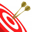 Hitting Targets — Stock Photo #6769060