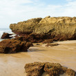 Atlantic coast — Stock Photo #7304508
