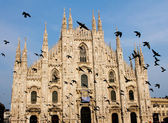 Milan's Cathedral with flying pigeons — Stock Photo