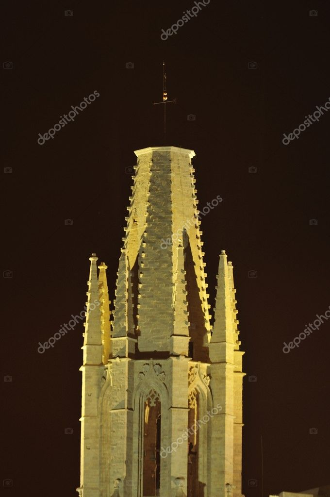 Santa Maria gothic catedral in Girona Catalonia Spain — Stock Photo #6836883