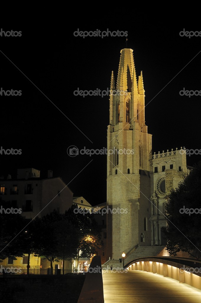 Santa Maria gothic catedral in Girona Catalonia Spain — Stock Photo #6837587