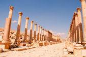 Roman Corinthian Colonnade in Jerash — Stock Photo