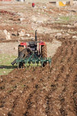 Agriculture in Amman,Jordan — Stock Photo