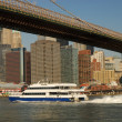 Stock Photo: Brooklyn bridge and Manhattan skyline in New York