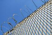 反对蓝蓝的天空铁丝网围栏 — 图库照片