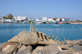 Shell sculpture in the harbor of Puerto del Rosario, Fuerteventura Spain — Photo