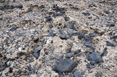 Volcanic stone, Fuerteventura — Stock Photo