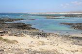 Strand in de buurt van el cotillo, fuerteventura spanje — Stockfoto