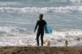 Surfer with his dogs on the beach — Stockfoto