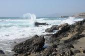 Rocciosa costa di fuerteventura, isole canarie, spagna — Foto Stock
