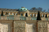 Sanssouci Palace and Vineyards in Potsdam — Стоковое фото