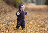 Cute todder in an autumnal park — Stock Photo