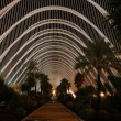 Stock Photo: L'Umbracle in City of Arts and Sciences in Valence, Spain