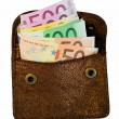 Stock Photo: Golden wallet with euro notes