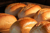 Fresh bread rolls in the oven — Stock Photo