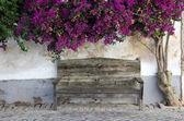 Banco de madeira no centro histórico de faro, algarve, portugal — Foto Stock