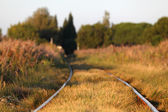 Railway track. Shallow depth of field. — Stock Photo