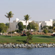 Dubai Creek Golf Course — Stock Photo