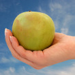 Stock Photo: Hand with Apple