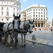 Horse-driven cab in Vienna, Austria. — Stock Photo #7731739