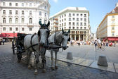 Horse-driven cab in Vienna, Austria. — Stock Photo
