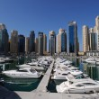Stock Photo: Yachts at Dubai Marina