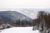 View of Heidelberg in Winter, Germany — Foto de Stock