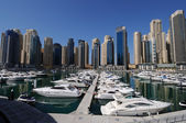 Yachts at Dubai Marina — Photo