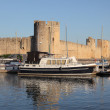 Stock Photo: Marinat ramparts of Aigues-Mortes, southern France