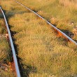 Stock Photo: Railway track. Shallow depth of field.