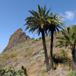 Landscape at Masca valley. Tenerife, Spain — Stock Photo