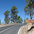Stock Photo: Mountain Road in El Teide National Park, Canary Island Tenerife, Spain