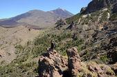 Hiker in Teide National Park, Tenerife, Spain — Stock Photo