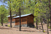 Log cabins in the forest — Stock Photo