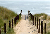 Path to the beach, Netherlands — Stock Photo