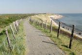 Percorso sulla cima di dune in paesi bassi — Foto Stock