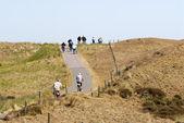 オランダの砂丘で自転車に乗る — ストック写真