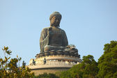 Giant Buddha Statue in Tian Tan. Hong Kong, China — Stock Photo