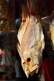 Dried fish at market in Hong Kong — ストック写真