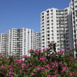 Stock Photo: Modern highrise residential buildings