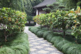 Traditional Chinese garden in Shanghai, China — Stock Photo