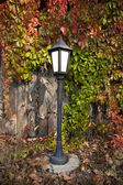 Street lantern on autumn foliage — Stockfoto